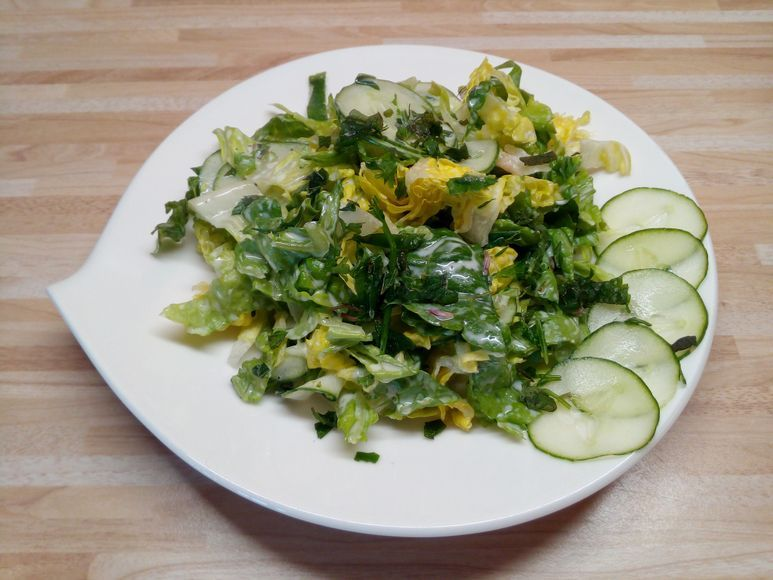 Grüner Salat vegetarisch - 180